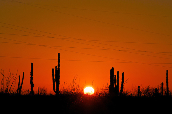 Mulege, Baja California Sur, Mexico (Anna Fishkin)