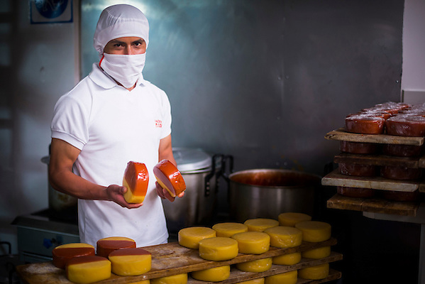 Portrait of a worker waxing cheese in the cheese factory at Hacienda Zuleta, Imbabura, Ecuador