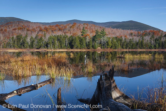 Sandwich Range Wilderness - Guinea Pond during the autumn months in Sandwich, New Hampshire USA. This pond is located along the old Beebe River Railroad which was a logging railroad in operation from 1917-1942.