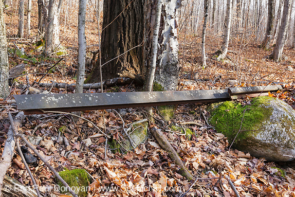 Abandoned railroad track along the Little East Pond Trail in Livermore, New Hampshire.