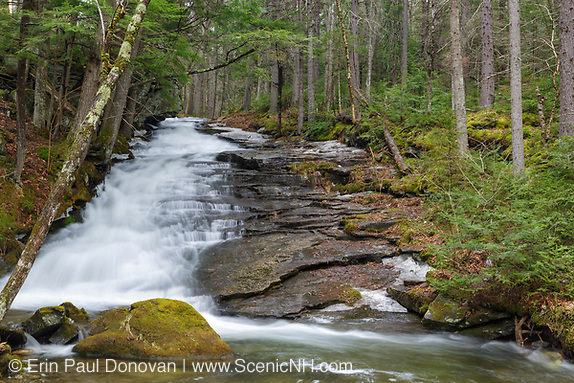 Dearth Brook in Landaff, New Hampshire USA during the spring months. This brook is located on the side of the Cobble Hill Trail.