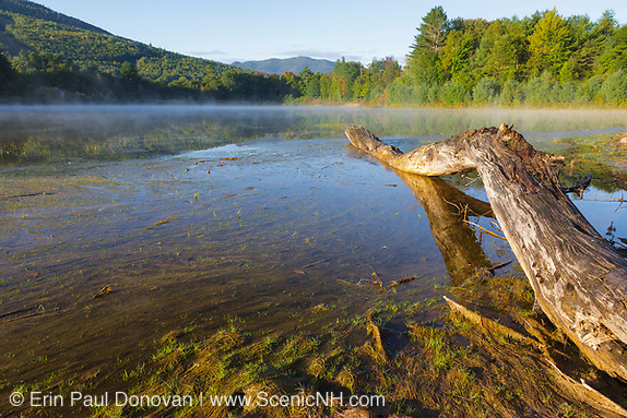 Thorne Pond Conservation Area in Bartlett, New Hampshire. This conservation area is located along Route 302.