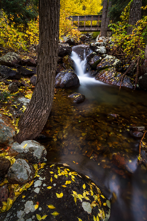 A small stream rushes through the hillside and under a bridge in Big Cottonwood Canyon near Salt Lake City, Utah in the Fall.  Fall colors envelope the area adding a splash of color to the rocks along its banks. (Clint Losee)