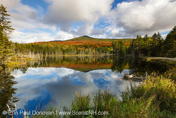 2017 print sale. Reflection of autumn foliage on Mount Deception in a small pond along Old Cherry Mountain Road in Carroll, New Hampshire USA during the autumn months.