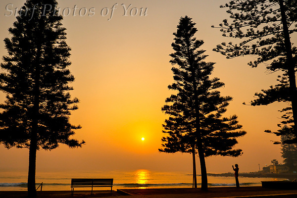 $45, 21 November 2019, Narrabeen,Northy, North Narrabeen, NN, Surf Photos of You, @surfphotosofyou, @mrsspoy, Dee Why sunrise. ($45, 21 November 2019, Narrabeen,Northy, North Narrabeen, NN, Surf Photos of You, @surfphotosofyou, @mrsspoy, Dee Why sunrise.)