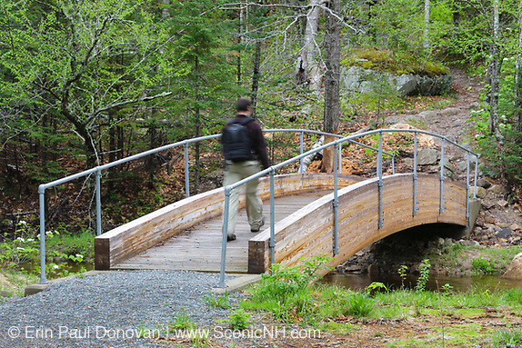 Robertson bridge, which crosses the Saco River, along the Webster Cliff Trail (Appalachian Trail) in the New Hampshire White Mountains. This bridge, built in 2008, is dedicated to the memory of Albert Robertson and his wife, Priscilla. Both volunteered their time to the AMC Four Thousand Footer Club, and Albert was one of the founding members.