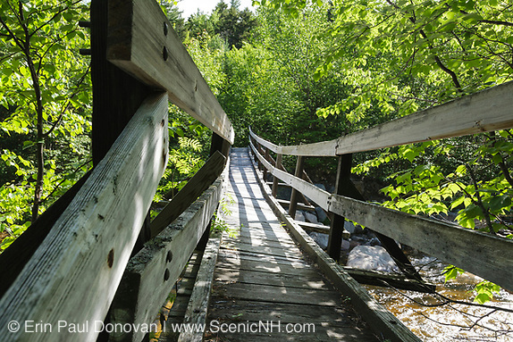 Bridge along the Thoreau Falls Trail in Pemigewasset Wilderness of New Hampshire. It crosses the East Branch of the Pemigewasset River, and has a very noticeable twist.