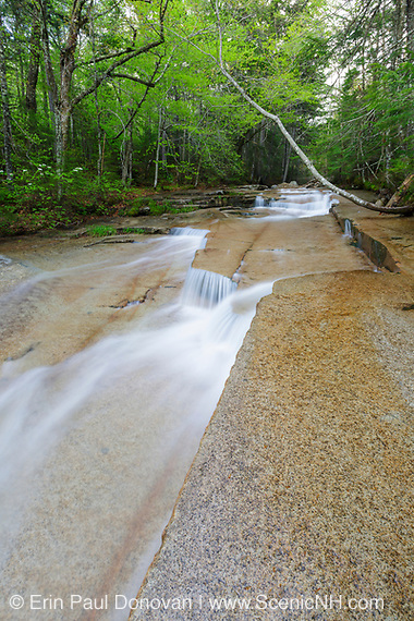 Cascades during the spring months. These cascades are located along Walker Brook in Franconia Notch State Park of the White Mountain National Forest, New Hampshire.