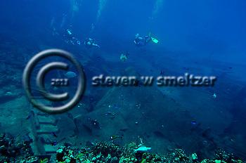 Debris Field, Oro Verde, Shipwreck, Grand Cayman (Steven Smeltzer)