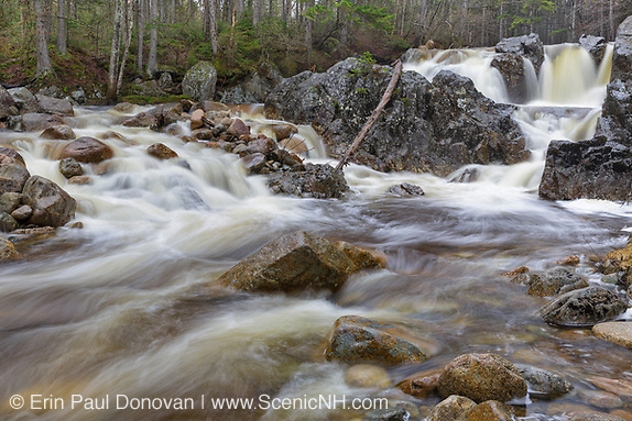 The original Zealand Falls in the White Mountains of New Hampshire USA during the spring months. These falls are located along the Zealand River.