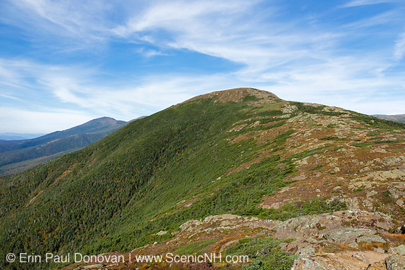 Crawford Path (Appalachian Trail) in the New Hampshire White Mountains