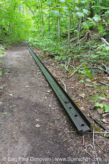 Railroad track from the East Branch & Lincoln Railroad along the Bondcliff Trail in the Pemigewasset Wilderness. This short section of trail follows the old Black Brook spur line at Camp 16.