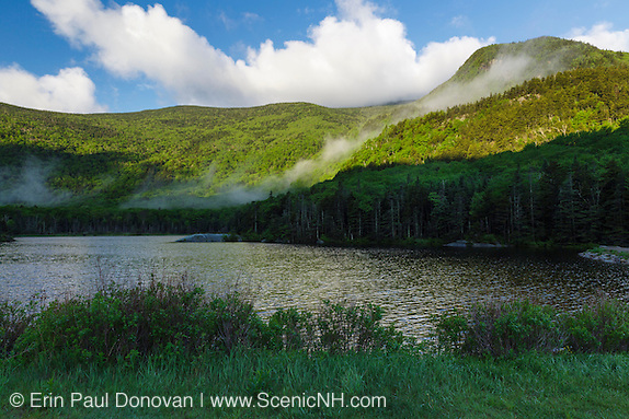 Beaver Pond in Kinsman Notch of the White Mountains, New Hampshire USA during the month of June. Jakey's Crag is in the background.