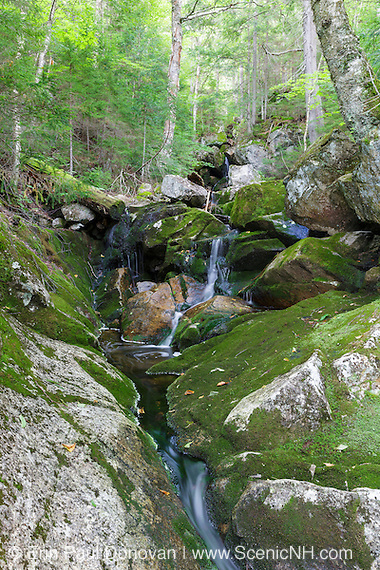 A section of Elephant Head Brook in Carroll, New Hampshire during the summer months.