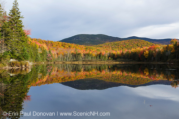 Beebe River Railroad country - Reflection of autumn foliage in Kiah Pond in Sandwich, New Hampshire on a cloudy autumn day.