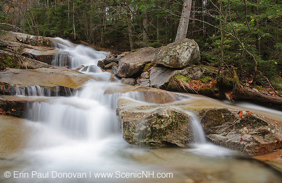 Located along Walker Brook in the White Mountain National Forest of New Hampshire.