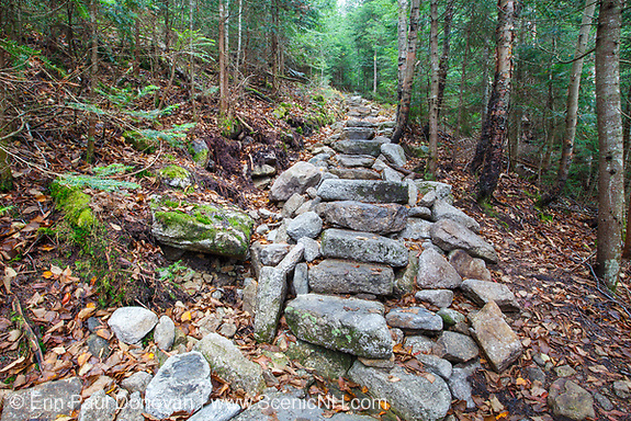 October 2012 - Stone steps along the Mount Tecumseh Trail in the White Mountains, New Hampshire USA. One year after being installed and this length of staircase is falling apart. The hillside (left-hand side) continues to collapse and erode. After a trail inspection by Forest Service in June 2012, they (FS) stepped in and took control of ongoing work along this trail. It has been suggested this erosion issue will need to be corrected by a professional trail crew.