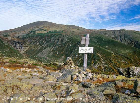 View from Boott Spur Trail in Sargent's Purchase of the White Mountains, New Hampshire. Tuckerman Ravine is on left with Mt Washington at the top and Huntington Ravine is on right.