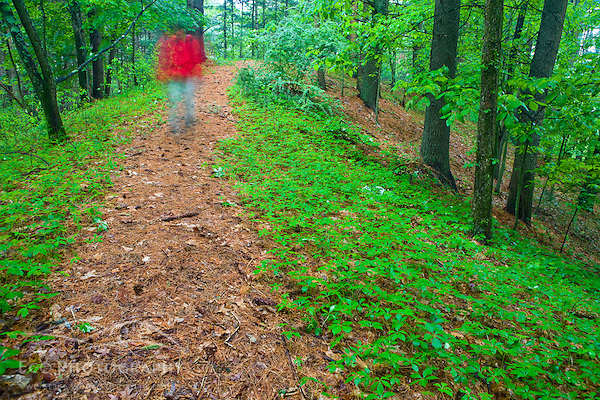 A hiker on a woodland trail in Medfield, Massachusetts. (Jerry and Marcy Monkman/EcoPhoto)