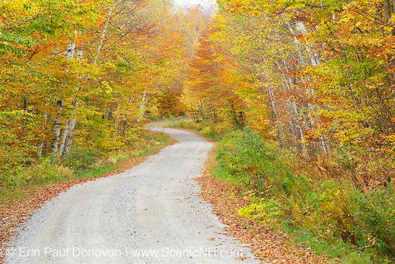 Backroads of New New Hampshire. Autumn foliage along Gale River Road in the White Mountains, New Hampshire.