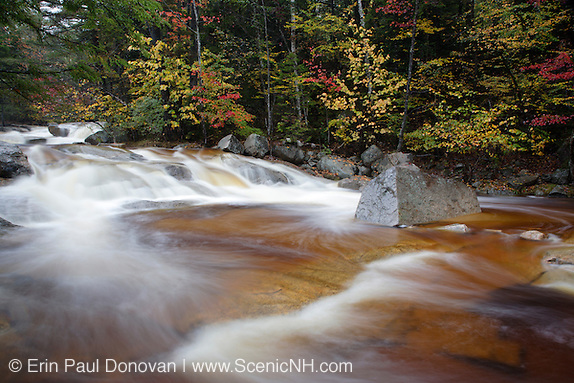 Swift River in the White Mountain National Forest of  New Hampshire USA during the autumn months.