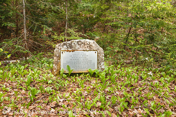 Memorial to Dr. Ralph E. Miller and Dr. Robert E. Quinn in the Thoreau Falls Valley of the Pemigewasset Wilderness in Lincoln, New Hampshire. The doctors successfully crash landed their plane on February 21, 1959 in this location and survived for four days before dying of exposure.