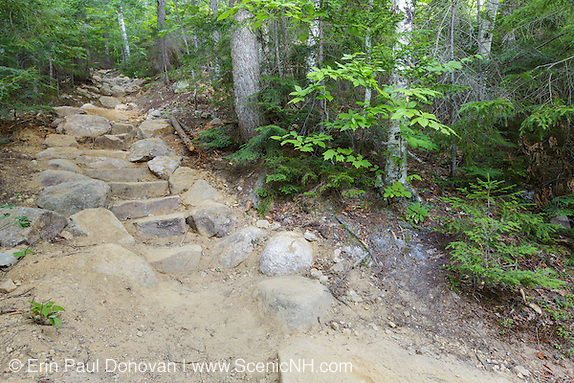 A newly built stone staircase along Davis Path in the White Mountains of New Hampshire during the summer months. This is the work of a professional AMC trail crew.