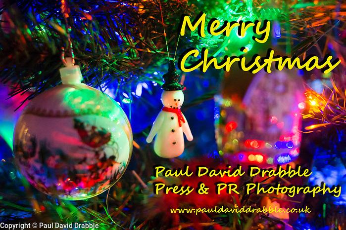 Christmas Tree 20 December 2016 Copyright Paul David Drabble www.pauldaviddrabble.co.uk (Paul David Drabble)