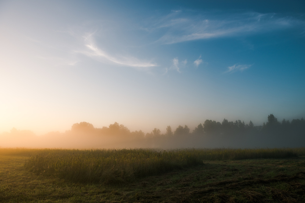 Sunrise, august fog and late mowing of meadows, near Līgatne, Gauja National Park (Gaujas Nacionālais parks), Latvia Ⓒ Davis Ulands | davisulands.com (Davis Ulands/Ⓒ Davis Ulands | davisulands.com)