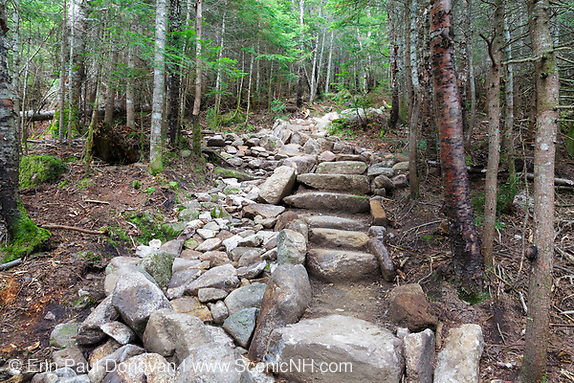 July 2016 - Newly built stone steps along the Mt Tecumseh Trail in Waterville Valley, New Hampshire during the month of July.