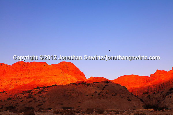 Warm sunlight illuminates the rocky hills near the Dead Sea oasis of Ein Gedi at dawn. (© 2012 Jonathan Gewirtz / jonathan@gewirtz.net)