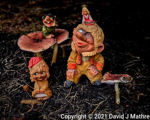 Troll Family Autumn Mushroom Harvest Celebration. (David J Mathre)