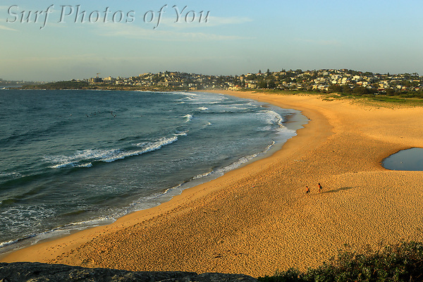 $45.00, 29 January 2019, North Curl Curl, Surf Photos of You. @surfphotosofyou, @mrsspoy (SPoY)