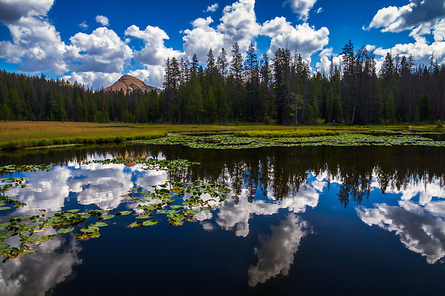 Lake Marion sits in Utah's Uinta mountains. After a little hiking you come across this gem of a small little lake. While the fishing is alright, the reflections on a warm Summer cloud-filled day are great! (Clint Losee)