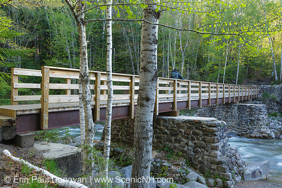 A hiker crosses over Franconia Brook on a foot bridge in Lincoln, New Hampshire. Old abutments from Trestle 7 of the old the East Branch & Lincoln Logging Railroad are used to support the foot bridge. The East Branch & Lincoln Railroad operated from 1893-1948.