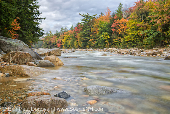 East Branch of the Pemigewasset River near the Lincoln Woods Trailhead during the autumn months in Lincoln, New Hampshire.