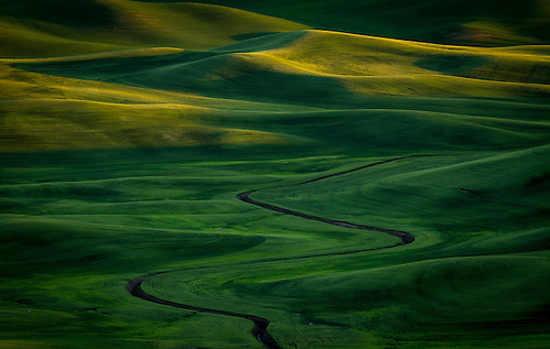 A meandering ditch winds its way through the lush green rolling hills of the Palouse in Southeastern Washington. (Clint Losee)