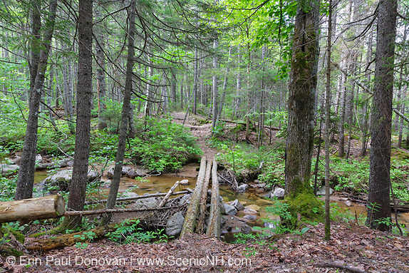 Definition of Wilderness, Log bridge at the Notch Brook crossing along the Nancy Pond Trail in the Pemigewasset Wilderness of the New Hampshire White Mountains.