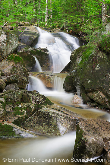 Tributary of Lost River on Mount Jim in Kinsman Notch of Woodstock, New Hampshire USA during the summer months.