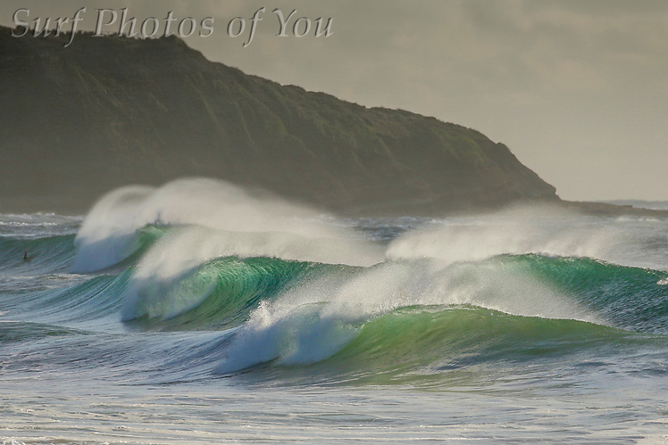 9 November 2017, Surf Photos of You, @surfphotosofyou, @mrsspoy, Dee Why surfing, Long Reef surfing (9 November 2017, Surf Photos of You, @surfphotosofyou, @mrsspoy, Dee Why surfing, Long Reef surfing)