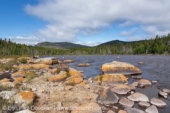Pemigewasset Wilderness - Shoal Pond during the summer months in Lincoln, New Hampshire.