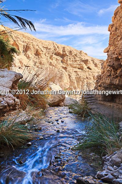 Nahal David flows over rocks in a canyon in the Ein Gedi nature preserve. (© 2012 Jonathan Gewirtz / jonathan@gewirtz.net)