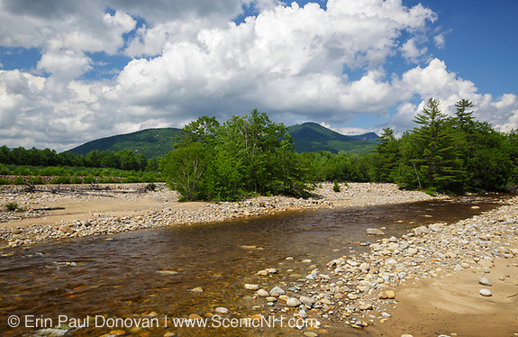 East Branch of the Pemigewasset River during the summer months in Lincoln, New Hampshire USA.