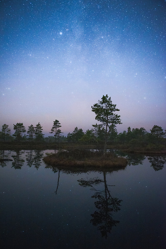 Small island with a lone pine tree floating in bog-pool on clear night with Milky Way in backgroung, Ķemeri National Park, Latvia Ⓒ Davis Ulands | davisulands.com (Davis Ulands/Ⓒ Davis Ulands | davisulands.com)