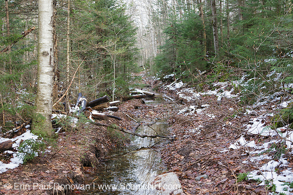 East Branch & Lincoln Railroad - Flooding from Tropical Storm Irene in 2011 uncovered railroad ties along the Pemi East Trail in the Pemigewasset Wilderness of Lincoln, New Hampshire.