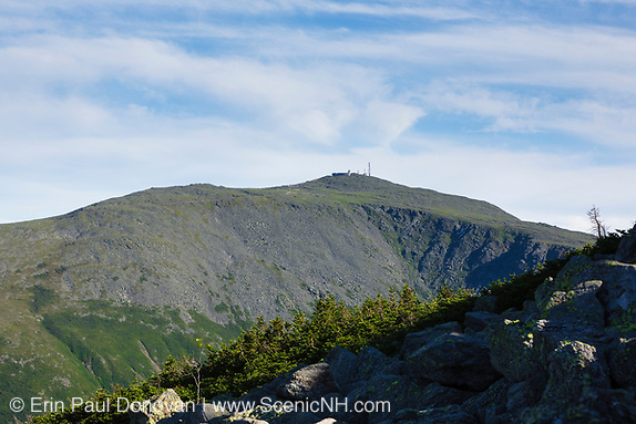 Mount Washington in the Presidential Range from along the Six Husbands Trail in Thompson and Meserve's Purchase, New Hampshire.