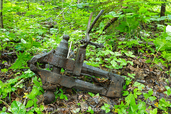 Artifacts at Camp 22 which was a logging camp along the East Branch & Lincoln Railroad in the Thoreau Falls Valley of the Pemigewasset Wilderness in Lincoln, New Hampshire. The EB&L was a logging railroad which operated from 1893-1948.