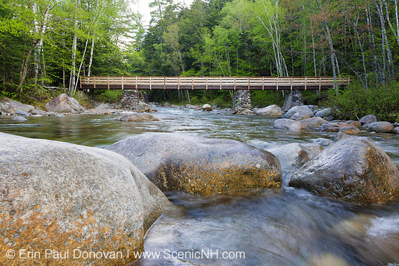 Foot bridge along the Lincoln Woods Trail which crosses Franconia Brook. Hikers enter into the Pemigewasset Wilderness on the right hand side of this bridge. Old abutments from Trestle 7 which was once part of the East Branch & Lincoln Logging Railroad are used to support the foot bridge. Located in Lincoln, New Hampshire.
