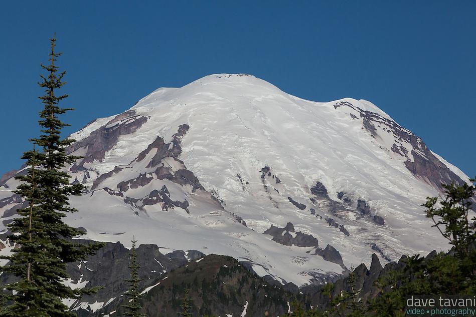The snows of Mt. Rainier. (Dave Tavani)