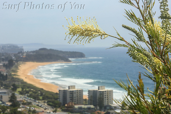 $45.00, 12 November 2020, Narrabeen Beach, Narrabeen surfing, Surf photography, WOTD, Surf Photos of You, @surfphotosofyou, @mrsspoy, Dee Why sunrise, Dee Why Beach, (SPoY)